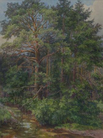 W. MORDEIT