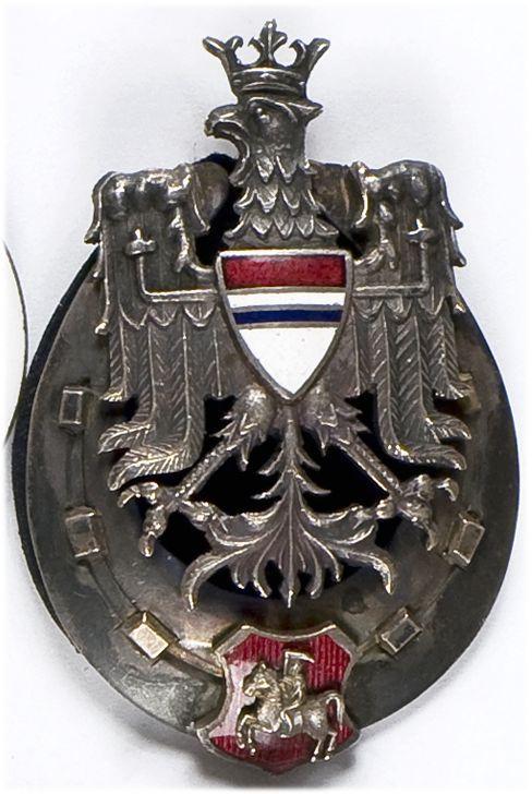 Odznaka pamiątkowa 10 Pułku Ułanów Litewskich