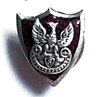 Odznaka organizacyjna Związku Strzeleckiego