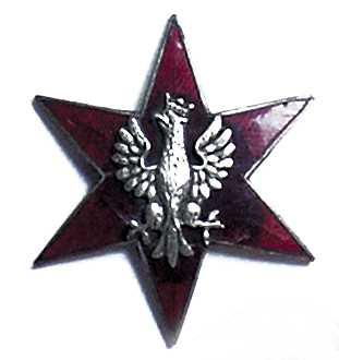 """Odznaka """"Gwiazda Beselera"""""""