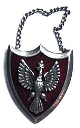 Odznaka - żeton Związku Polaków w Rosji