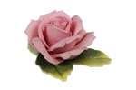 Porcelanowa róża Karl Ens