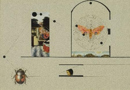 8. Kompozycja - Martwy ptak