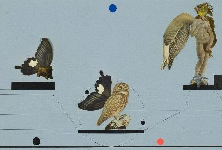 6. Kompozycja - Nocne ptaki