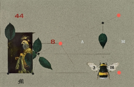 15. Kompozycja - z owadem